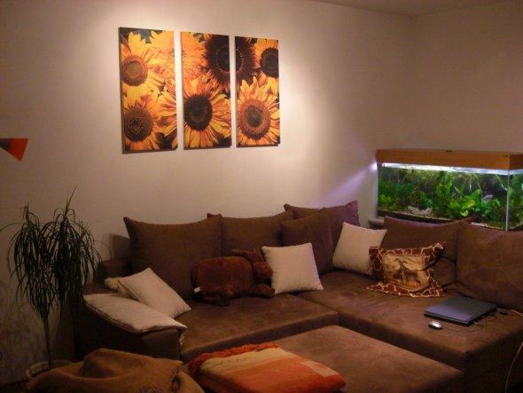 Wohnzimmer 39 wohnzimmer 39 unsere 1 wohnung zimmerschau - Aquarium wohnzimmer ...