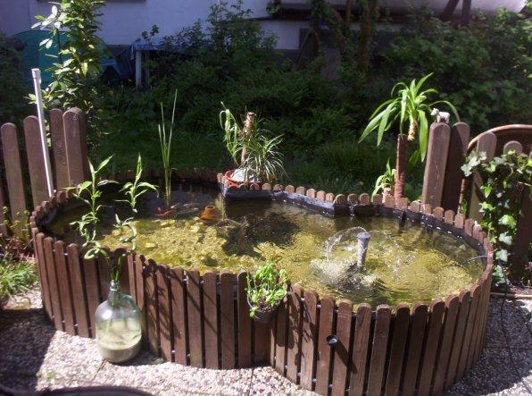 Terrasse / Balkon \'Mein Gartenteich\' - Mein Gartenteich - Zimmerschau