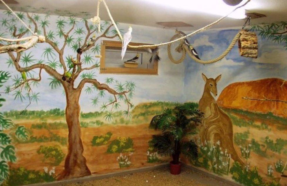 Outback - Vogelzimmer von RotTigerchen