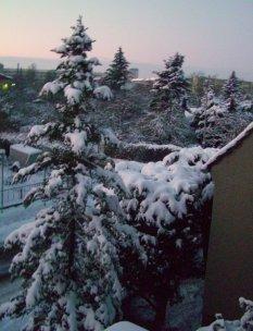 Januar im Schnee versunken