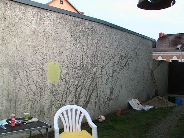 Eine große hässliche Mauer, mit Spuren von Efeubewachsungen.