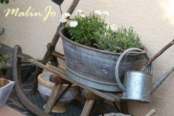Garten 'Unser Gärtchen'