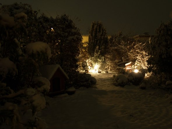 Garten 'Garten im Schnee'