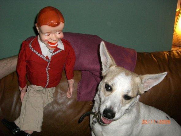 Wäh ist diese Bauchrednerpuppe hässlich :-) Wo der Hund recht hat, hat er recht!