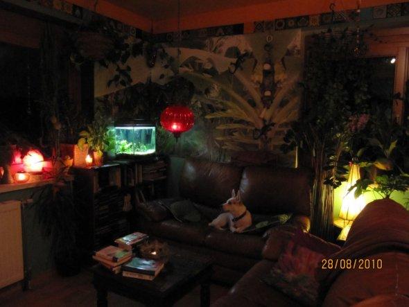 Wohnzimmer 'Wohnzimmer 2009 in Grün'