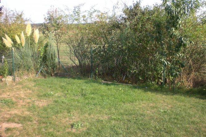 Blick von der hinteren Terrasse in den Garten