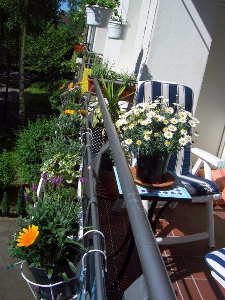 Terrasse / Balkon 'Die fertige Insel'