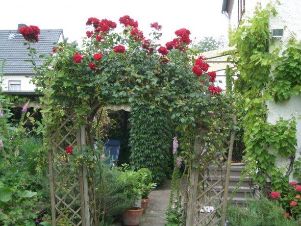 Garten 'Balkonien und Garten'