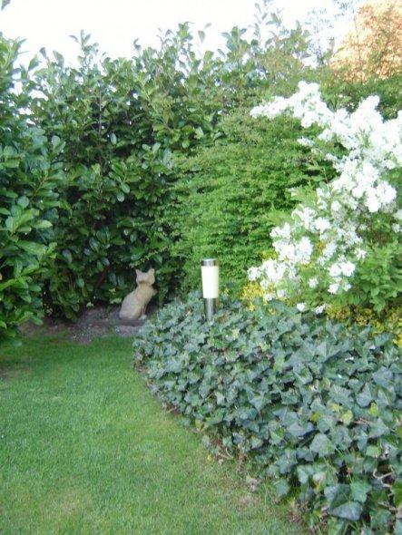 """Garten '""""Mitbewohner""""'"""