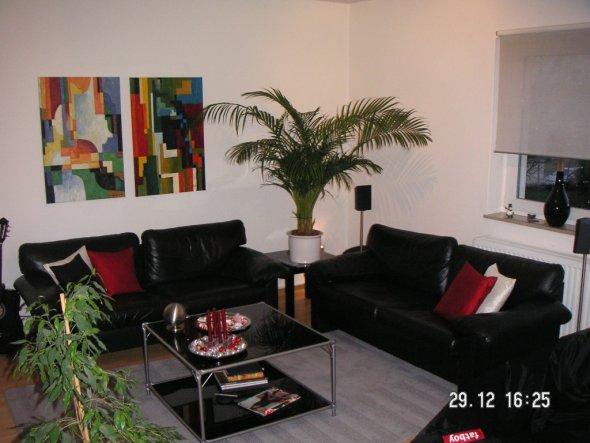 wohnzimmer 39 unsere wohnlounge 39 unsere erste gemeinsame wohnung zimmerschau. Black Bedroom Furniture Sets. Home Design Ideas