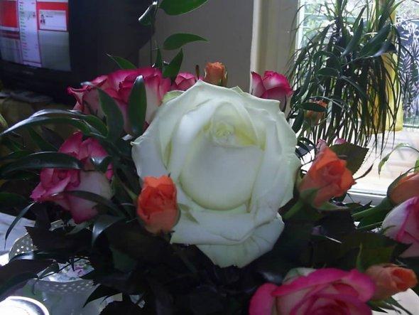 Zum Geburtstag bekam ich diesen Blumenstraus meiner großen Tochter Ania