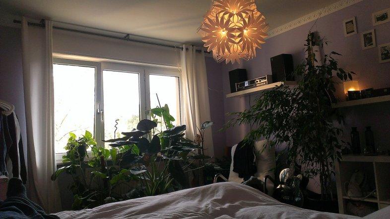 Schlafzimmer 'Das Reich meiner Träume'