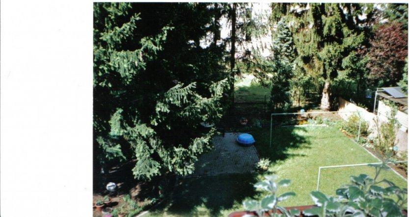 So sieht mein gartehn im Sommer aus, viele Kräuter, gemüse,Erdbeeren, alles selbst angepflanzt.