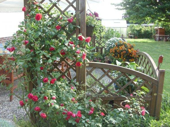 Garten 39 garten terrasse vor anbau 39 mein domizil for Gartengestaltung vor der terrasse
