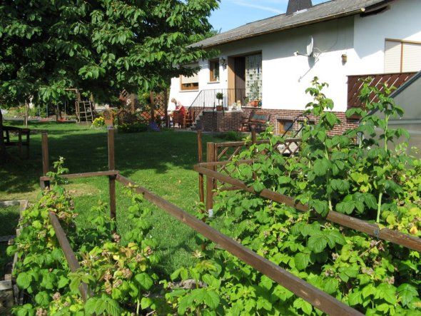 Blick durch die Himbeeren über die Wiese auf's Haus - vor dem Anbau 2012.