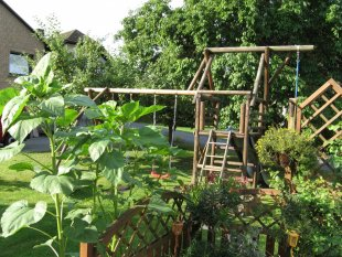 Garten, Terrasse  (vor Anbau)