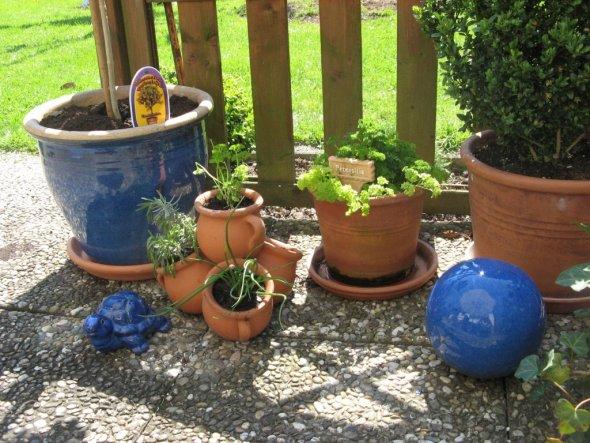 Kräuter und Topfpflanzen auf der Terrasse