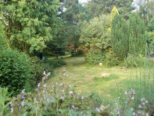 Garten Rundgang 1