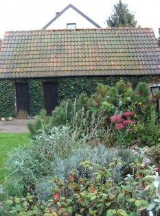 Garten - Hang an der Terrasse