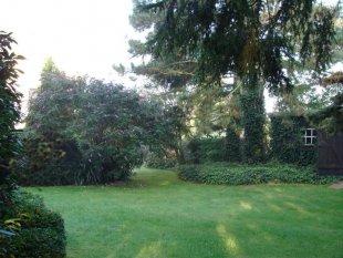 Gartenrundgang Teil 3