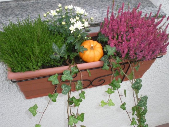 Deko 'Herbst 2009'