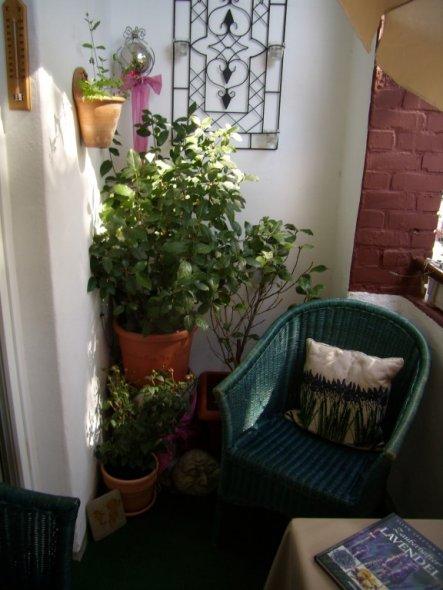 Terrasse / balkon 'mein kleiner balkon'   meine neue wohnung ...