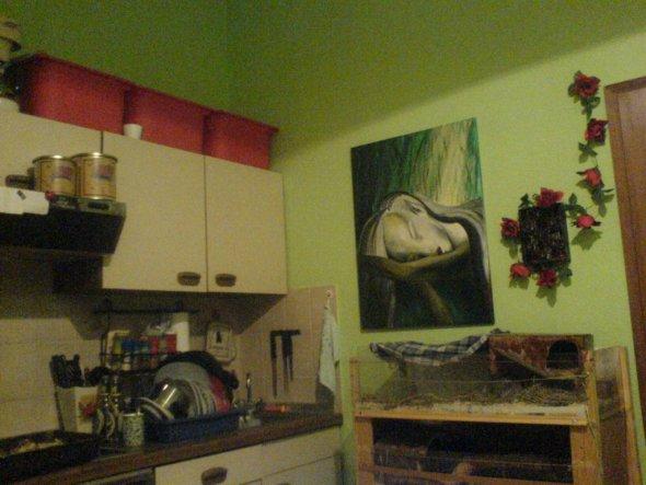 Küche 'Schweinestall'
