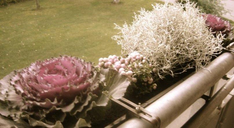 Terrasse / Balkon 'Mein aktueller Balkon '