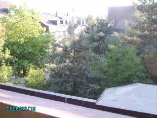 Terrasse / Balkon 'Tersasse'