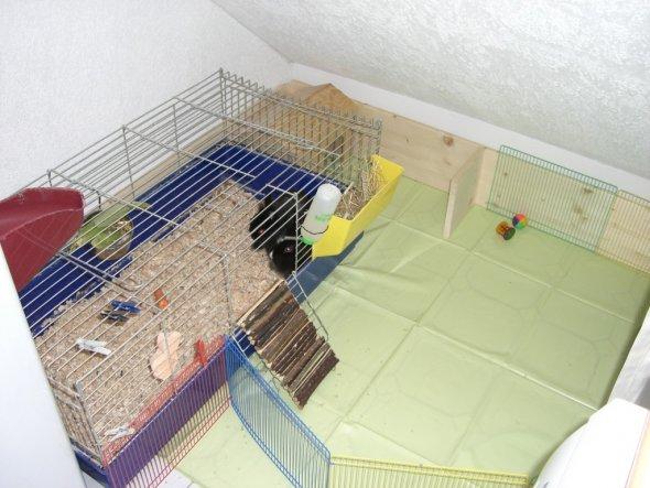 Haustiere 'Hasenheim'
