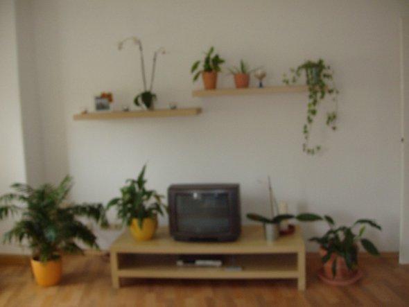 altbauwohnung wohnzimmer:Wohnzimmer 'wohnzimmer' – Altbauwohnung – Zimmerschau