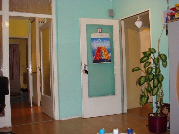 Die Glastüren füren rechts in den Flur und links in den Küchenbereich
