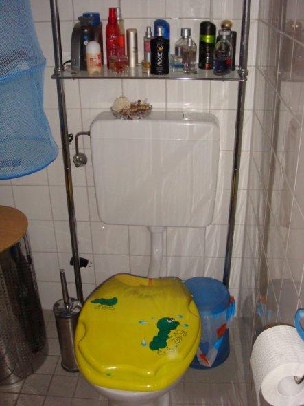 Die Toilette mit dem schönen Toilettendeckel