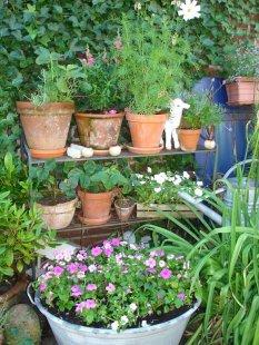 Kleinod im Garten
