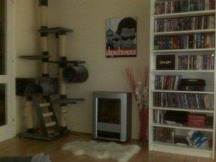 Wohn-/Wohlfühlzimmer