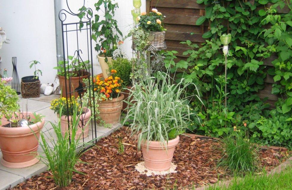 Garten und Terasse von Montschi