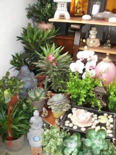 Mein Mini-Garten