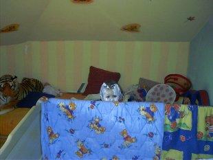 Kinderzimmer 39 felix r uberh hle 39 kleines gl ck zimmerschau - Kinderzimmer hannah ...