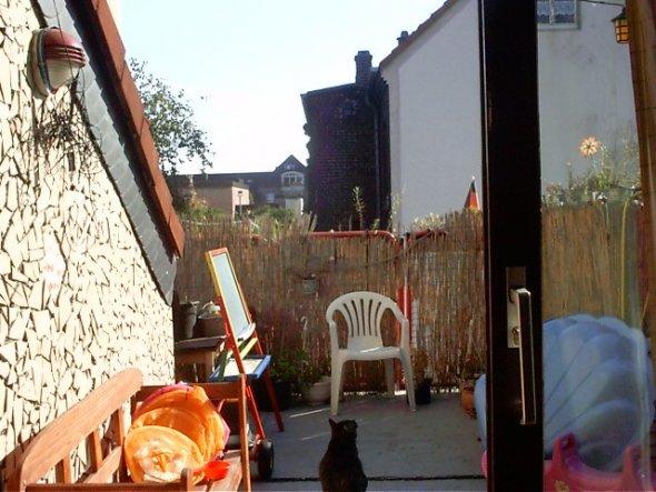 Blick vom Wohnzimmer zur Terrasse raus.