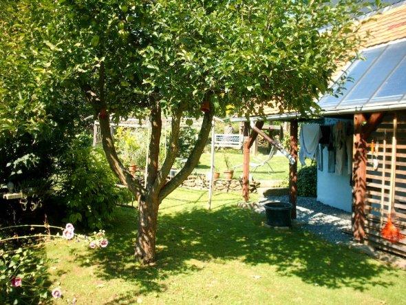 Vorbau zur Holzlagerung mit Sonnenkollektoranlage und Wäschetrockenplatz. Apfelbaum