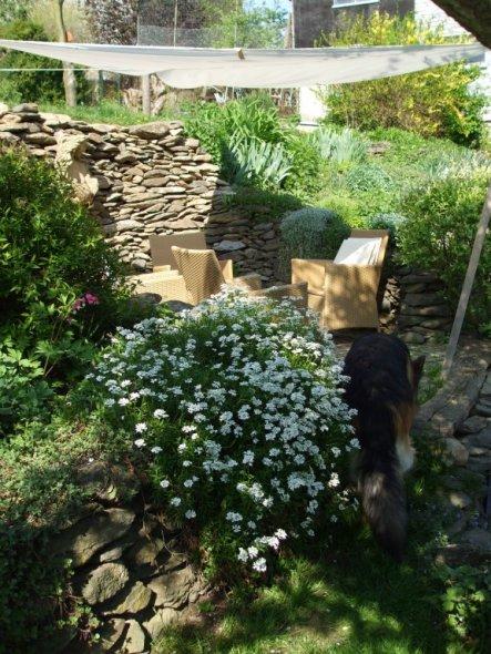 Garten 'Garten neu'