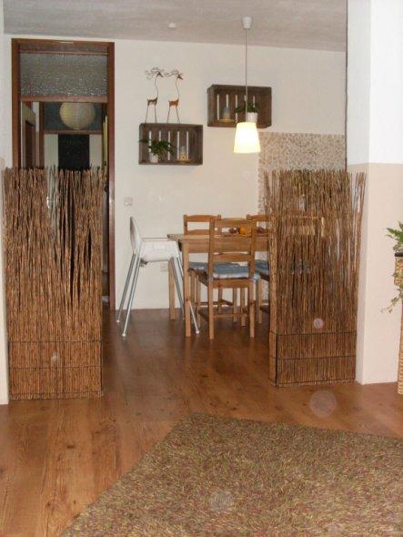 Blick vom Sofa aus in die Küche... da der Durchbruch sehr groß ist habe ich mir rechts und links Natursträucher hingestellt