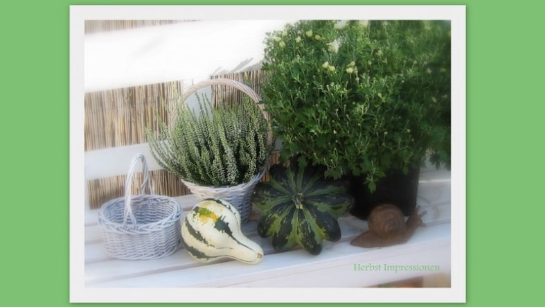 Garten 'Herbst Impressionen'
