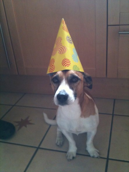 Geburtstag Party :))