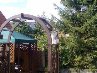 Haus&Garten&Terrasse