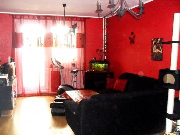 Akuellstes Bild, inzwischen ist das ganze Wohnzimmer rot. Bald gibt es neue Fotos denn alles bis auf Couch und fernsehschrank hat einen neuen P