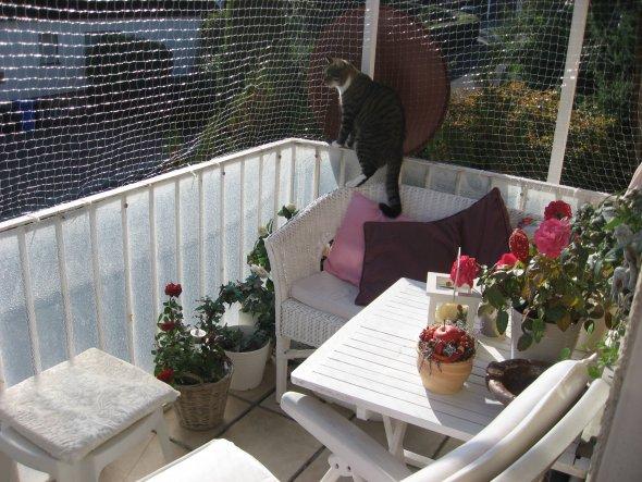 Terrasse / Balkon 'Mein kleines Reich und Ich'