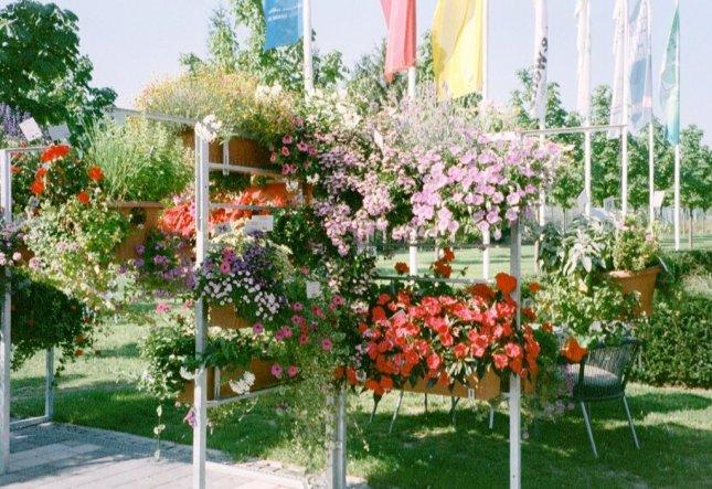 Blumenkästen