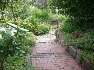 Garten Sommer 2009