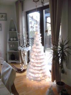Winterstimmung 2011